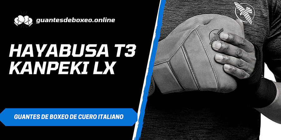 T3 Boxing Gloves
